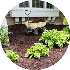 soil-bark-mulch-05