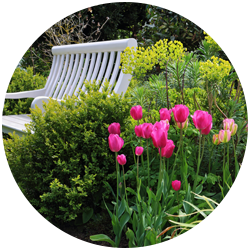 circular image of flower garden and white bench