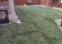 after photos of a Sod installation