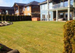 displaying backyard after installing sod