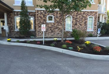 flower bed with bark mulch in the front of a commercial building