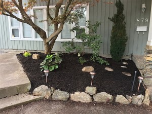 flower bed with bark mulch, a few plants and 3 outdoor lamps