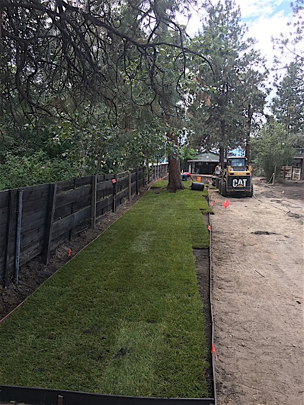 SOD Installation – Irrigation Installation – Edging
