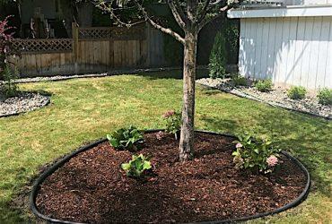 Edged garden around a tree with flowers in bark mulch