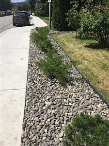 landscaping edging along the sidewalk with shrubs and rock