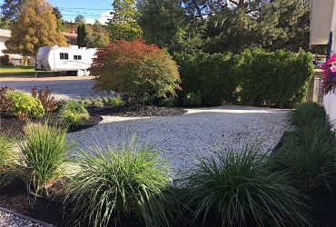 Newly landscaped front yard with green shrubs and bark mulch