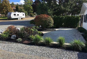 a newly landscaped garden of shrubs surrounded by bark mulch in the front yard