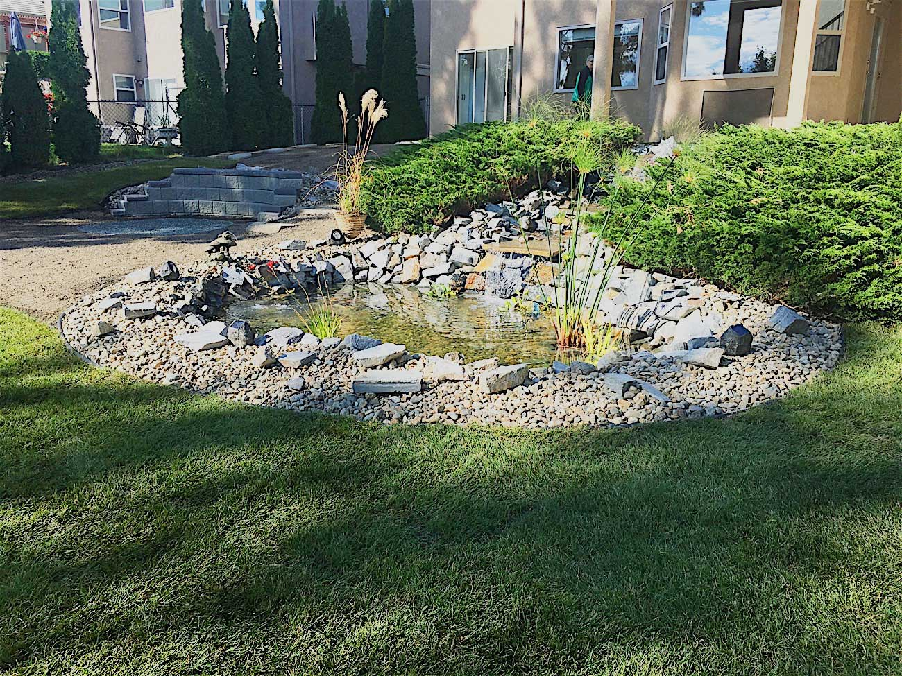 beautiful backyard pond landscaped with rocks and shrubs