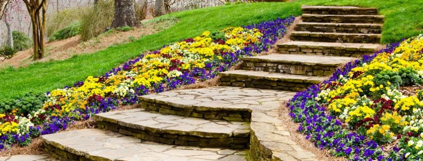 Stone pathway with steps leading to garden