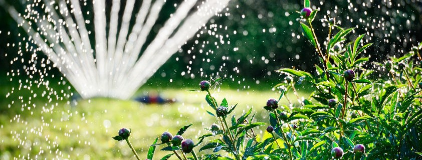 Lawn and garden irrigation system