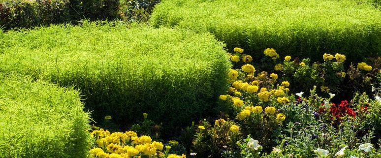 Kelowna Landscaping